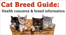 Trupanion Cat Breed Guide