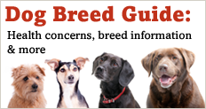 Trupanion Dog Breed Guide