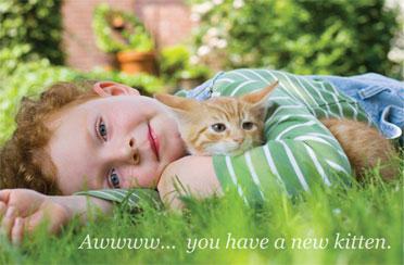 Little boy hugs his kitten